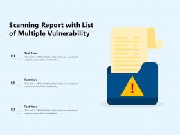 Scanning Report With List Of Multiple Vulnerability