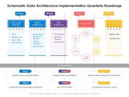 Schematic Data Architecture Implementation Quarterly Roadmap