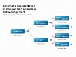 Schematic Representation Of Decision Tree Analysis In Risk Management