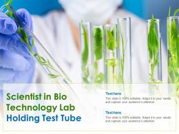 Scientist In Bio Technology Lab Holding Test Tube