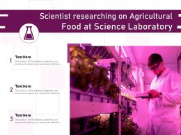 Scientist Researching On Agricultural Food At Science Laboratory