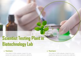 Scientist Testing Plant In Biotechnology Lab
