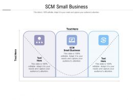 Scm Small Business Ppt Powerpoint Presentation Professional Demonstration Cpb