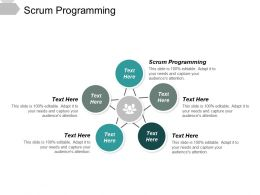 Scrum Programming Ppt Powerpoint Presentation File Graphic Images Cpb