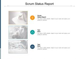 Scrum Status Report Ppt Powerpoint Presentation File Slides Cpb