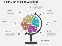 sd Human Brain In Stand With Icons Flat Powerpoint Design