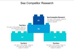 Sea Competitor Research Ppt Powerpoint Presentation File Gallery Cpb