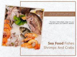Sea Food Fishes Shrimps And Crabs