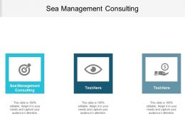 Sea Management Consulting Ppt Powerpoint Presentation Gallery Deck Cpb