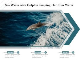 Sea Waves With Dolphin Jumping Out From Water