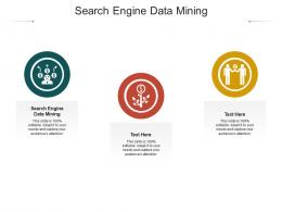 Search Engine Data Mining Ppt Powerpoint Presentation Icon Example Cpb