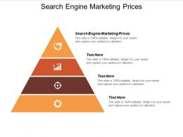 Search Engine Marketing Prices Ppt Powerpoint Presentation Pictures Format Cpb