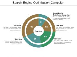 Search Engine Optimization Campaign Ppt Powerpoint Presentation Gallery Topics Cpb