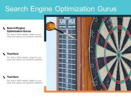 Search Engine Optimization Gurus Ppt Powerpoint Presentation Gallery Good Cpb
