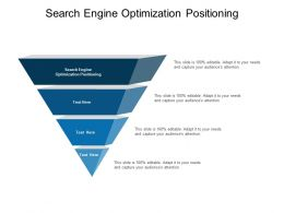 Search Engine Optimization Positioning Ppt Powerpoint Presentation Outline Cpb