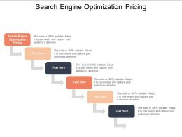 Search Engine Optimization Pricing Ppt Powerpoint Presentation Icon Diagrams Cpb