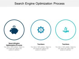 Search Engine Optimization Process Ppt Powerpoint Presentation Gallery Design Ideas Cpb