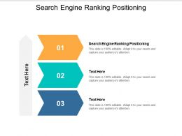 Search Engine Ranking Positioning Ppt Powerpoint Presentation Summary Master Slide Cpb
