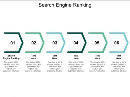 Search Engine Ranking Ppt Powerpoint Presentation Styles Display Cpb