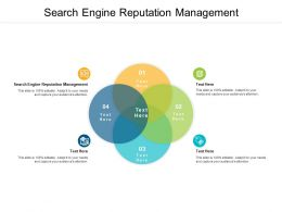 Search Engine Reputation Management Ppt Powerpoint Presentation Show Professional Cpb
