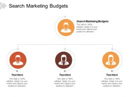 Search Marketing Budgets Ppt Powerpoint Presentation Outline Deck Cpb