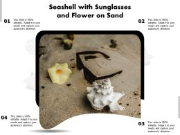 Seashell With Sunglasses And Flower On Sand