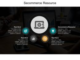 Secommerce Resource Ppt Powerpoint Presentation Portfolio Introduction Cpb