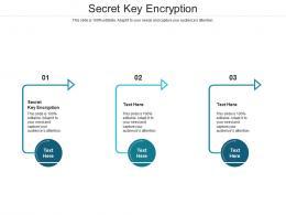 Secret Key Encryption Ppt Powerpoint Presentation Summary Mockup Cpb