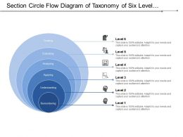 section_circle_flow_diagram_of_taxonomy_of_six_level_covering_process_stages_Slide01