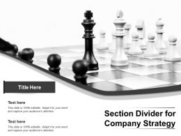 Section Divider For Company Strategy