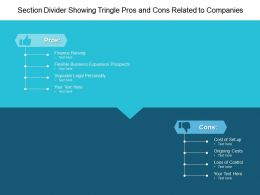 Section Divider Showing Tringle Pros And Cons Related To Companies