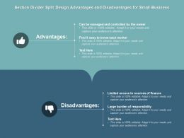 Section Divider Split Design Advantages And Disadvantages For Small Business