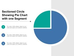 sectioned_circle_showing_pie_chart_with_one_segment_Slide01