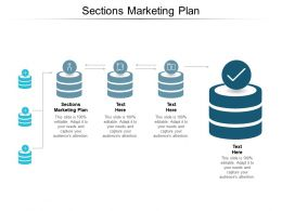 Sections Marketing Plan Ppt Powerpoint Presentation Pictures Summary Cpb