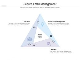 Secure Email Management Ppt Powerpoint Presentation Professional Format Ideas Cpb