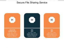 Secure File Sharing Service Ppt Powerpoint Presentation Model Elements Cpb