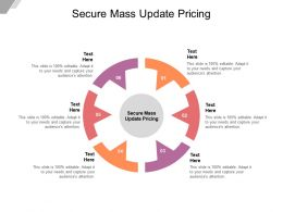 Secure Mass Update Pricing Ppt Powerpoint Presentation Outline Mockup Cpb