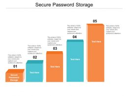 Secure Password Storage Ppt Powerpoint Presentation Professional Visuals Cpb