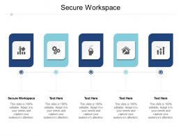 Secure Workspace Ppt Powerpoint Presentation Show Gallery Cpb