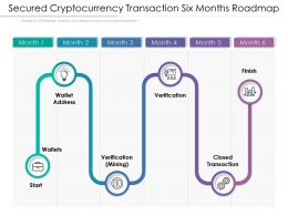 Secured Cryptocurrency Transaction Six Months Roadmap