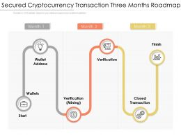 Secured Cryptocurrency Transaction Three Months Roadmap