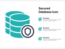 Secured Database Icon