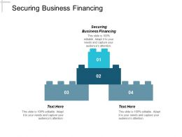 Securing Business Financing Ppt Powerpoint Presentation Pictures Example Topics Cpb