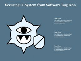 Securing It System From Software Bug Icon