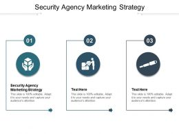 Security Agency Marketing Strategy Ppt Powerpoint Presentation Show Cpb