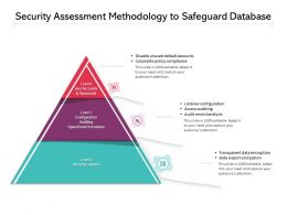 Security Assessment Methodology To Safeguard Database