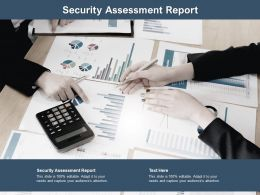 Security Assessment Report Ppt Powerpoint Presentation Model Example Introduction Cpb