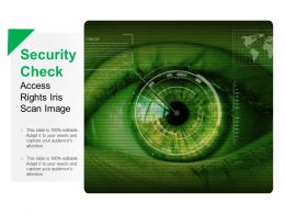 Security Check Access Rights Iris Scan Image