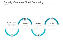 Security Concerns Cloud Computing Ppt Powerpoint Presentation Icon Graphic Images Cpb