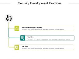 Security Development Practices Ppt Powerpoint Presentation Styles Outfit Cpb